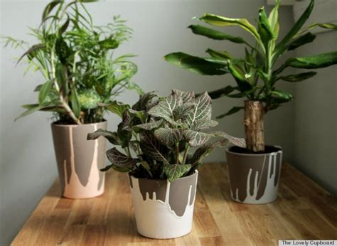 7 diy planter ideas you probably never thought of photos