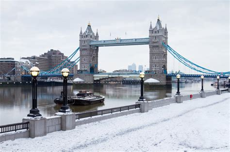 thames river cruises xmas river thames christmas cruise with lunch or afternoon tea