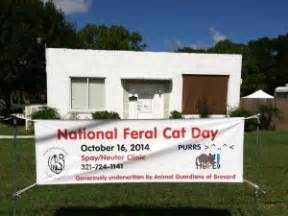 Detox Melbourne Fl by Alley Cat Allies Another Successful National Feral Cat Day 174