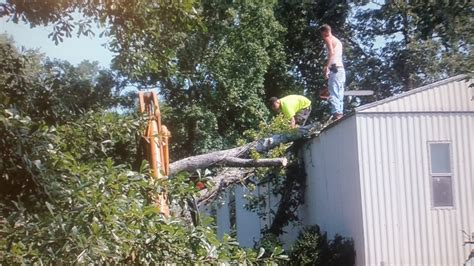 tree mobil tree falls on mobile home wvua23