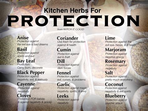 Kitchen Magic Herbs Magical Plants Witch It