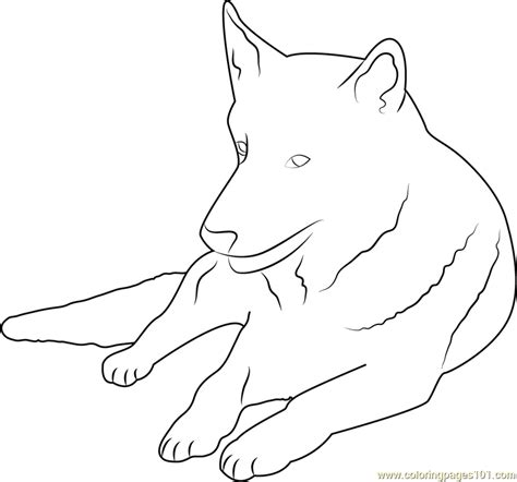 coloring pages of german shepherd german shepherd coloring page free coloring pages