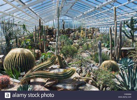 cactus house botanical garden munich bavaria germany europe stock photo royalty free image