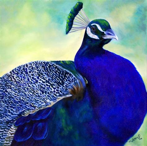peacock blue peacock blue by teresa johnson joseph donaghy art
