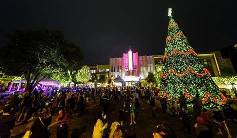 christmas light tours in must see houston neighborhoods