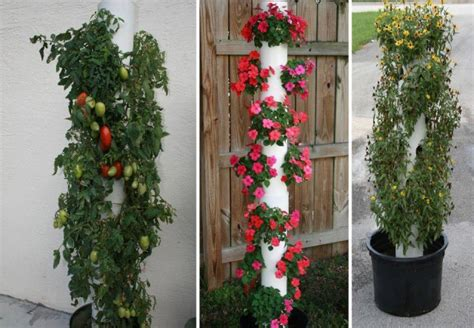 Vertical Pvc Garden Diy Vertical Pvc Planter Home Design Garden