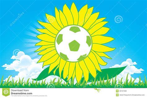 soccer in sun and soccer football sun flower stock photo image 25151630