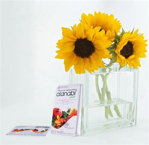 bunga matahari memiliki nama latin helianthus annuus linn