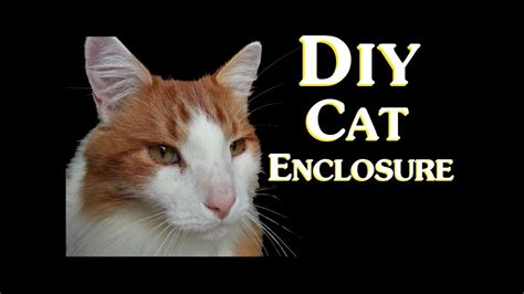 diy cat enclosure   save money  making  cheap