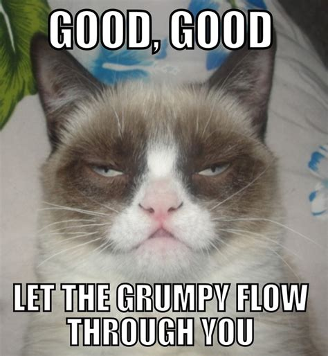 Grumpy Memes - cranky guy coming thru my bipolar life