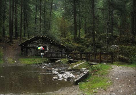 la casa bosco la casa nel bosco foto immagini paesaggi montagna
