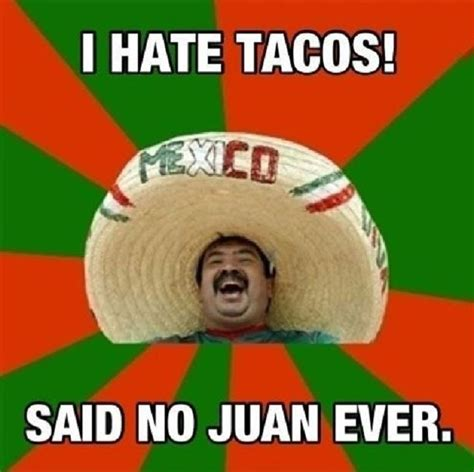 Taco Meme - 16 puns so dumb you won t stop laughing viral circus