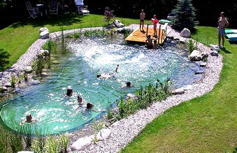 Backyard Pond Pool How To Build Your Own Swimming Pool Complete Guide