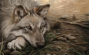wolves drawings beautiful wolf wallpaper
