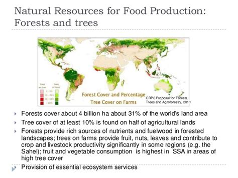 thesis on food security research on food security
