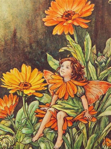 Flower Fairies Of The Garden 25 Best Ideas About Cicely Barker On Flower Fairies Vintage Fairies And
