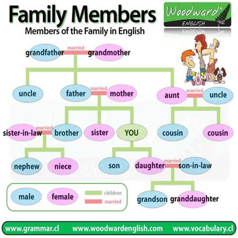 for the family members of the family in vocabulary study
