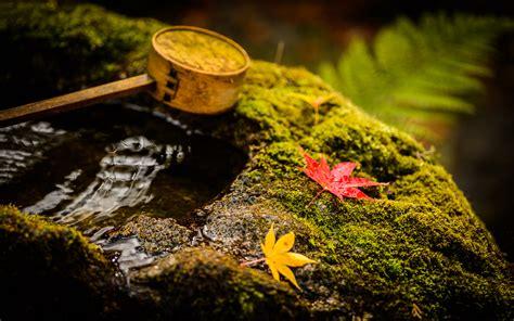 Jeffrey Friedl S Blog 187 Kyoto S Housen In Temple Part 3 Desktop Rock Garden