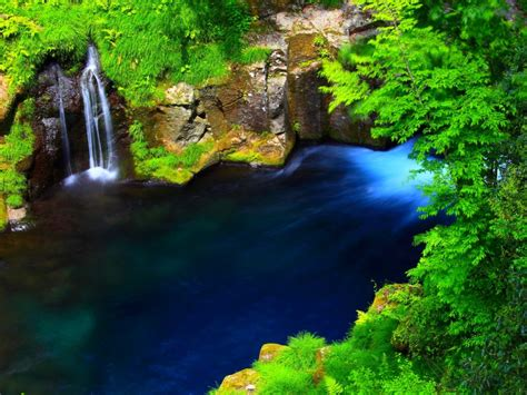 river forest waterfall lake blue water rocky coast  green moss grass forest trees green