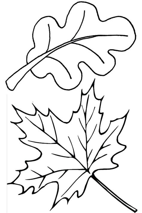 breadedcat free printable at leaves coloring pages 9 fall