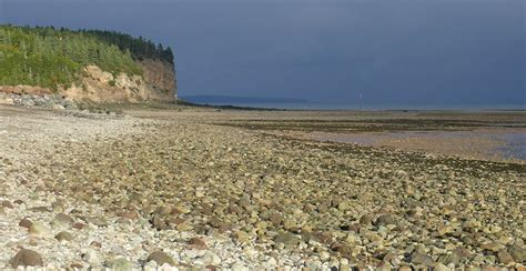 the view from rainshadow bay a lavender tides novel books the bay of fundy prairie