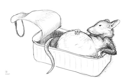 coloring page of templeton the rat tinned rat 10 000 bad drawings