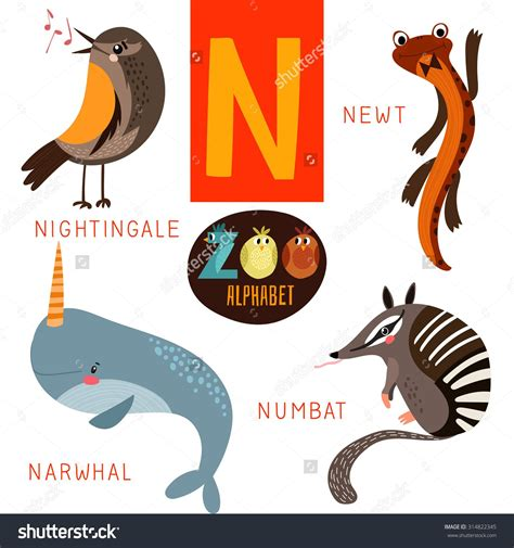 Animals That Start With The Letter N