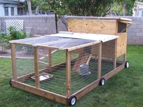chicken tractor backyard chickens community