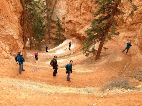 6 easy to moderate hikes in and around bryce canyon