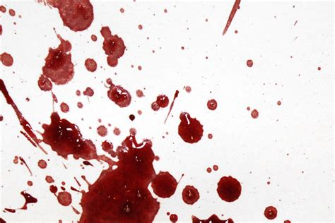 bloodstain pattern analysis terminology expiration pattern bloodstain pattern analysis