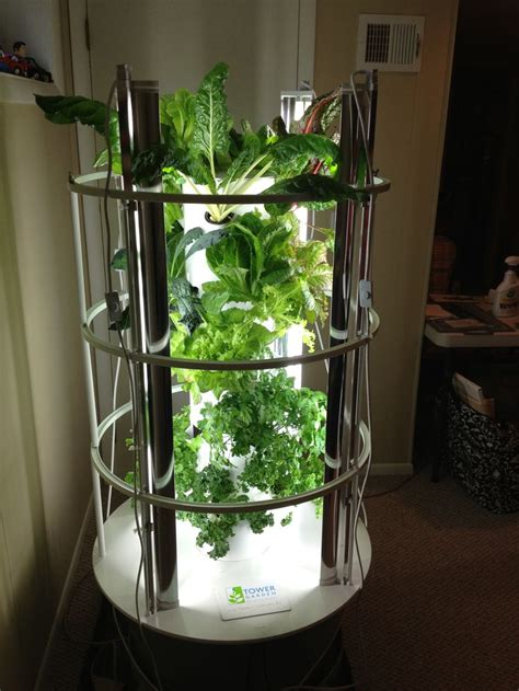 indoor tower garden  grow lights moves
