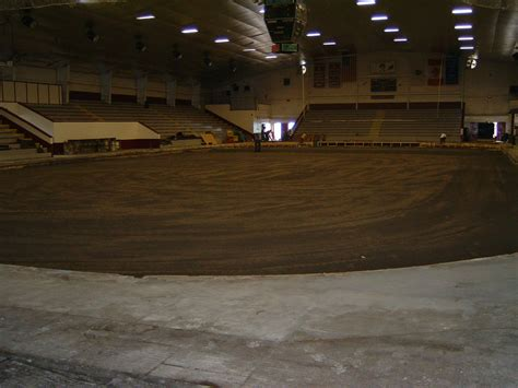 backyard rinks toronto backyard rinks toronto 100 backyard rinks toronto death of