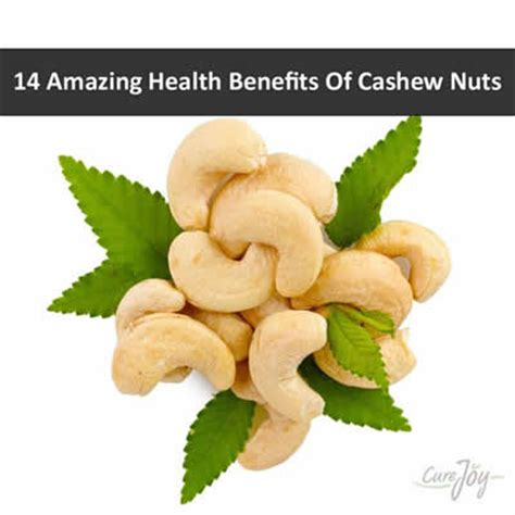 healthy fats nuts cashew nut the cholesterol and busting nut