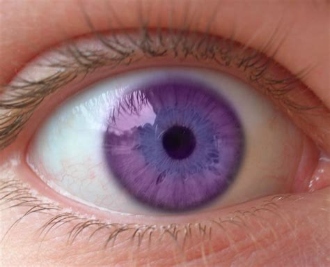 purple eye color purple eye quotes quotesgram