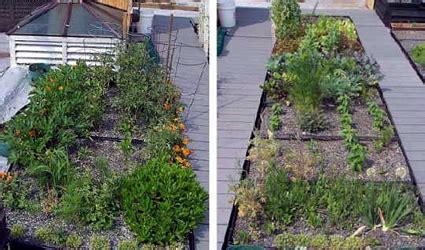 come realizzare un giardino pensile come realizzare un giardino pensile o un tetto verde in 5