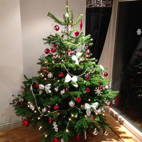 who introduced xmas trees to britain best 28 who introduced trees to britain decorar el 193 rbol de navidad una