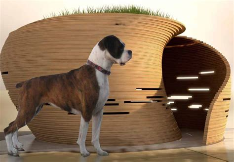 dog house styles modern dog house design modern house