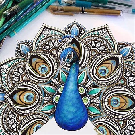 pretty peacock feather drawing creativefan peacock drawing by kellylahar