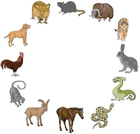 new year find out what animal you are new year the zodiac find out what