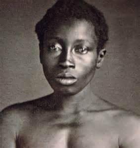 black history breeding american slaves democratic
