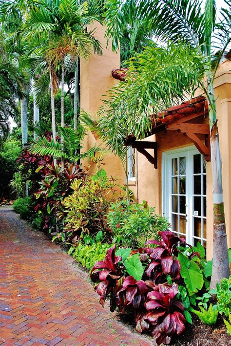 tropical landscape garden design miami knoll landscape portfolio knoll landscape design