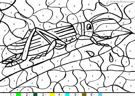 color by numbers animals coloring pages animal color by number color by number grasshopper