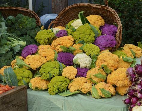 Valley Farmers Market Association Localharvest Umpqua Valley Farmers Market Localharvest