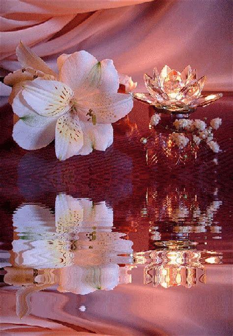 imagenes navideñas animadas con brillos flores bonitas con movimiento y brillo im 225 genes bellas