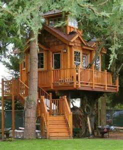 great tree house cabins cottages tiny houses tree