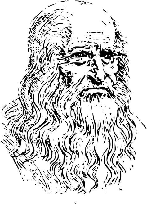 Outline Of A Portrait by Leonardo Da Vinci Self Portrait Outline 2 Free Vector 4vector