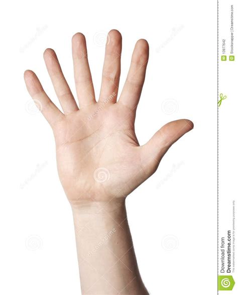to finger 6 fingers stock photo image of more evolution cutout