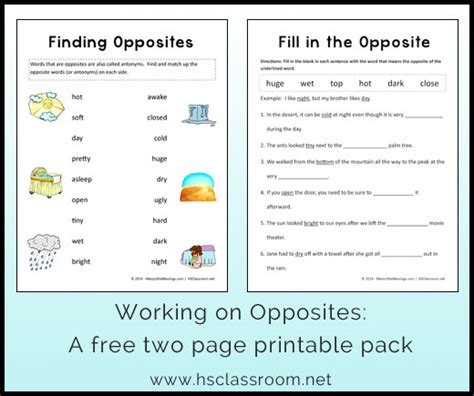 opposites worksheet printable packet