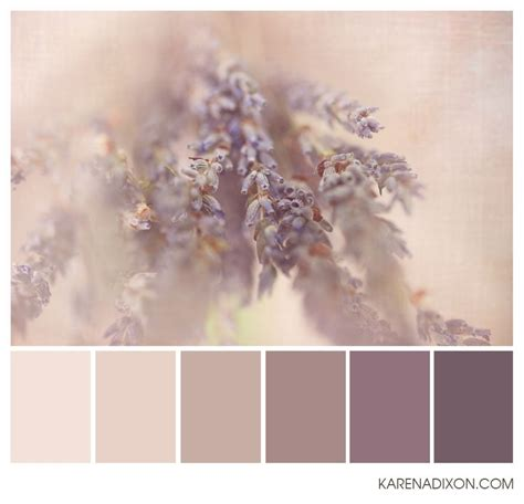 dusty plum lavender herb taupe these are exles of muted colors i would like