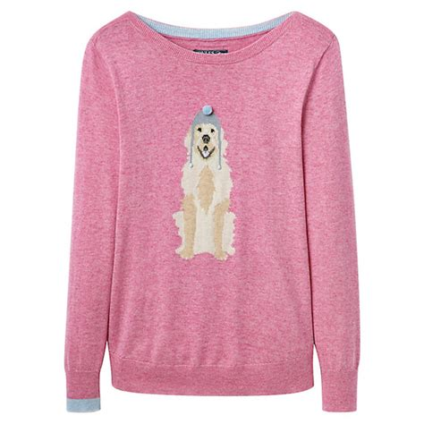 golden retriever sweater motif sweaters bodie on the road